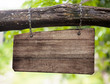 canvas print picture - blank wooden sign board hanging on branch