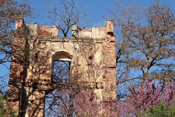 Ruinas Real Monasterio Santa María de Nogales. León.