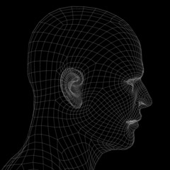 Human head. Wire frame render