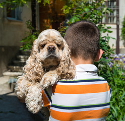 Little boy with spaniel