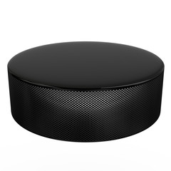 Hockey puck, 3d