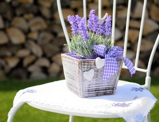 Lavender in the wooden pot placed on the metal chair.