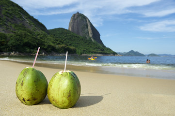 Brazilian Coco Gelado Coconuts Red Beach Rio de Janeiro