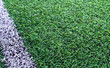 Artificial grass soccer field - 64123914