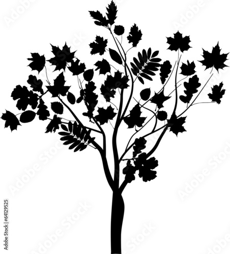 black abstract tree with large leaves
