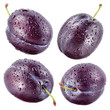 Plum with drops isolated on white. Collection.