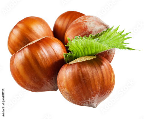 Hazelnuts with leaves on white background