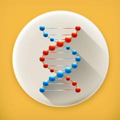 Deoxyribonucleic acid, long shadow vector icon