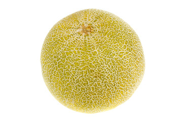 One ripe melon