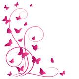 Fototapety Butterflies