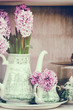 Retro setting with pink hyacinths