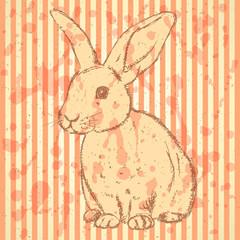 Sketch rabbit, vector vintage background