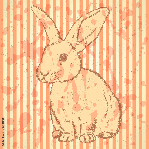 Sketch rabbit, vector vintage background