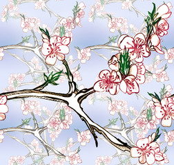 Seamless pattern with blooming apricots