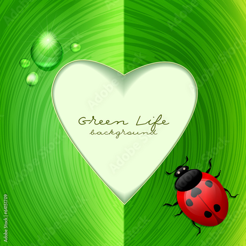Green frame with ladybug. Ecological background