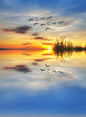 puesta de sol e el lago tranquilo