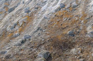 Texture gray limestone