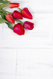 red tulips on white wooden background - 64162151