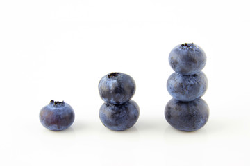 Growing up concept made of fresh blueberries