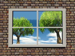 trees and nature through the window