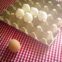 Eier - Konzept Individualität, Ausgrenzung, Außenseiter