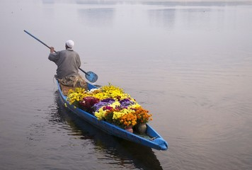 An old man selling flowers at Najeen lake Kashmir