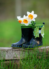 Child's rain boots and delicate flowers in spring garden