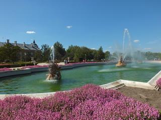 fuente en el palacio real de aranjuez