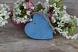 Herz mit Kirschblüten