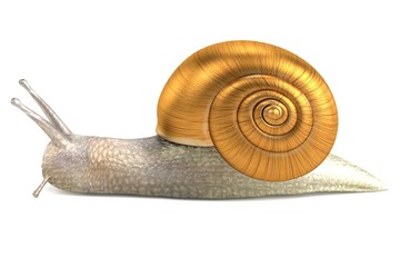 realistic 3d render of snail