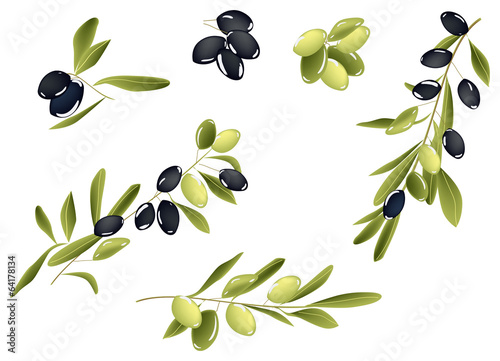 green and black olives collection isolated on white