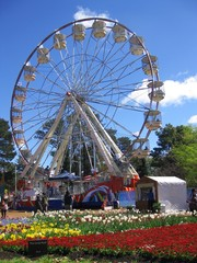 Flower garden and ferris wheel, Australia
