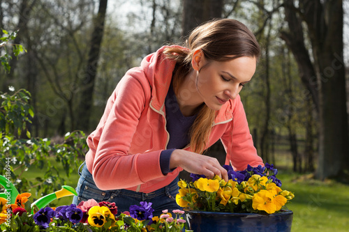 Staande foto Pansies Planting pot of flowers