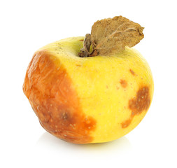 Rotten apple isolated on white
