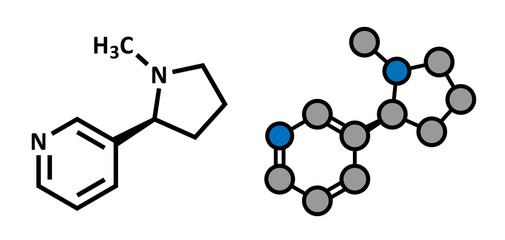 Nicotine tobacco stimulant molecule.