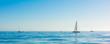 Sailbot on the ocean - 64199117