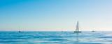 Sailbot on the ocean