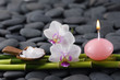 Spa still life with orchid with candle and grove on pebbles