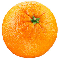 Orange isolated on a white background.
