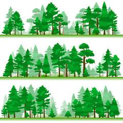 Forest. Samples 2.