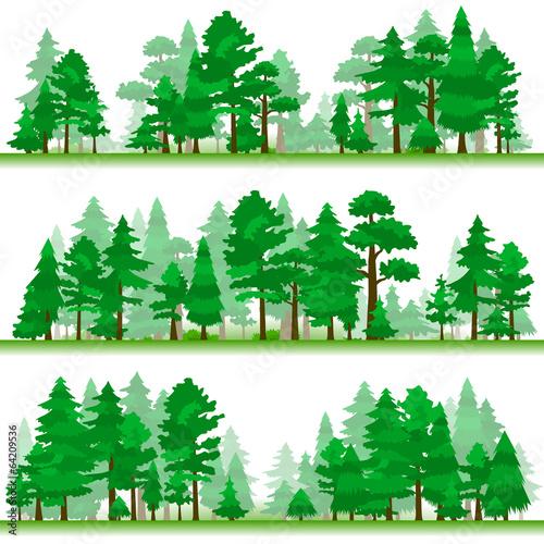 Forest. Samples 2. - 64209536
