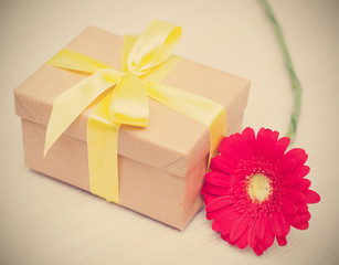 Bright red flower and a box with a gift, instagram effect