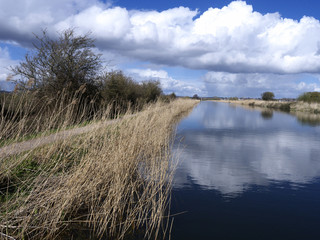 Exeter Canal south of Exeter,