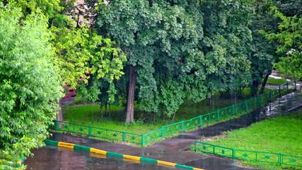 Summer rain, deserted street