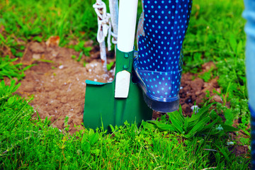 Woman wearing blue rubber boots using shovel in her garden