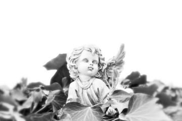 Engel aus Stein auf Efeu - schwarz weiß