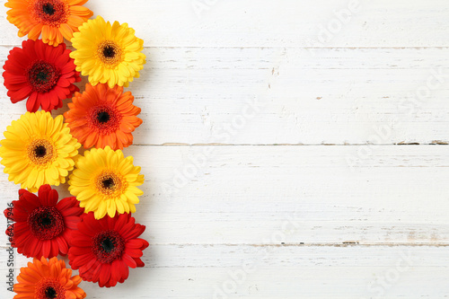 canvas print picture Gerbera auf Holz