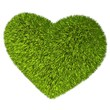 Green grass heart.