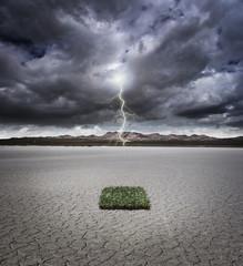 Environment under stress