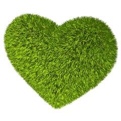 Green grass heart.